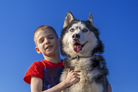 Boy hugged with love Siberian husky dog on blue color sky background. Isolated on blue. Family lifestyle. Friends together. Happy dog is smiling.