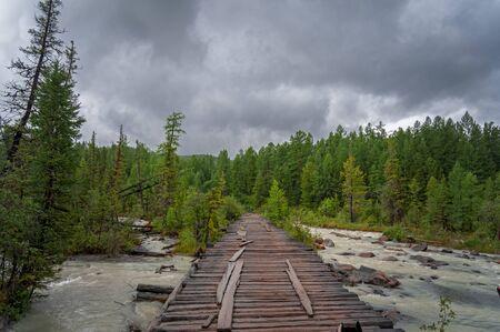 Coniferous forest landscape. Old wooden bridge over the forest river. Zdjęcie Seryjne