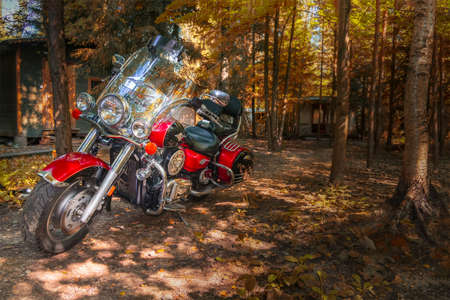 Motorcycle cruiser in bright sunny autumn forest.