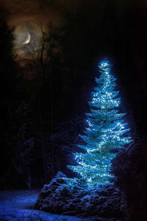 Dreamlike winter scene. Christmas tree among snowy forest at snowfall night. Xmas celebration background with bright crescent. Standard-Bild