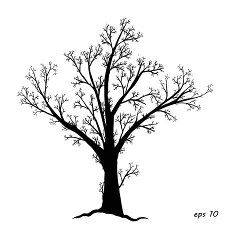 ebony: on a white background ebony, in isolation, for any project, vector