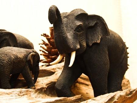 elephant Stock Photo - 8425396