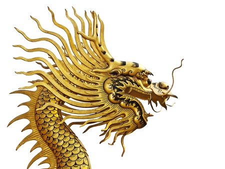 Golden Dragon isolated on a white background