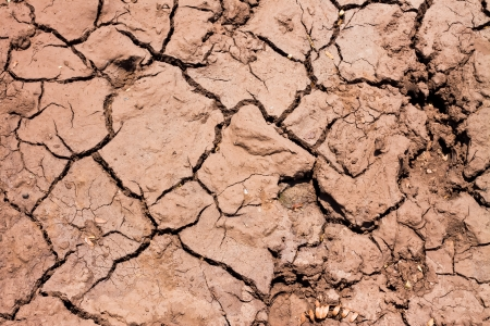 Top view shot of cracked soil Stock Photo - 14980709