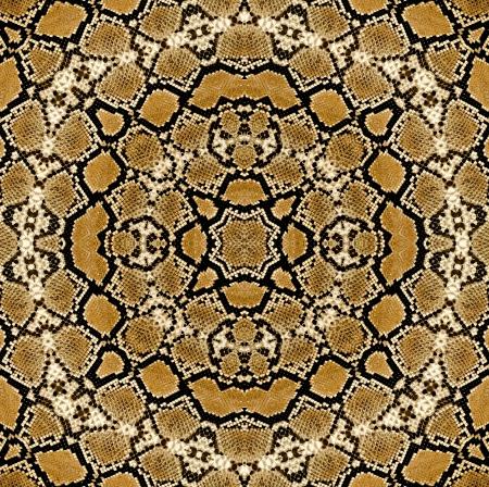 piel morena: Serpiente de cuero