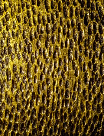 golden texture: muro d'oro trama