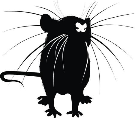 rats mice animals  Vettoriali