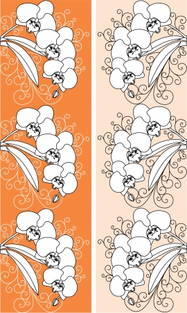 orchids flowers on an orange background of an orchid  Vector