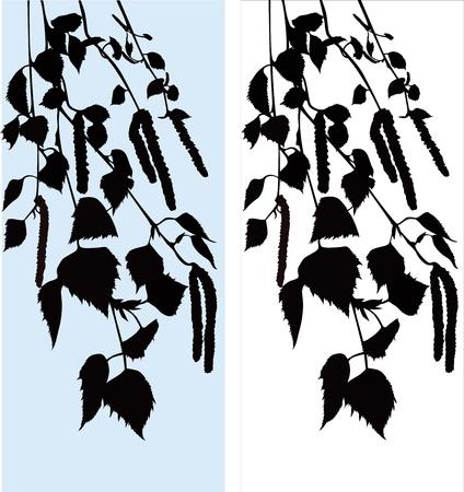 Birch branch tree Illustration