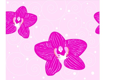 seamless background Orchid flowers on the pink background Vector