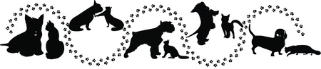 animals cats and dogs traces of the