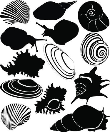 shell van een slak