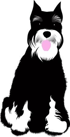 dog animal vector isolated on white background