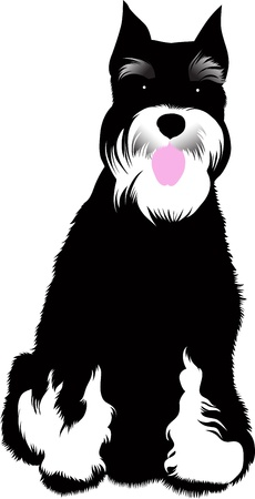 dog animal vector isolated on white background