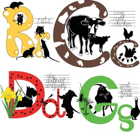 ntilde: alphabet letters training school Illustration