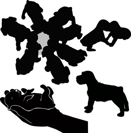 dog Stock Vector - 16478425