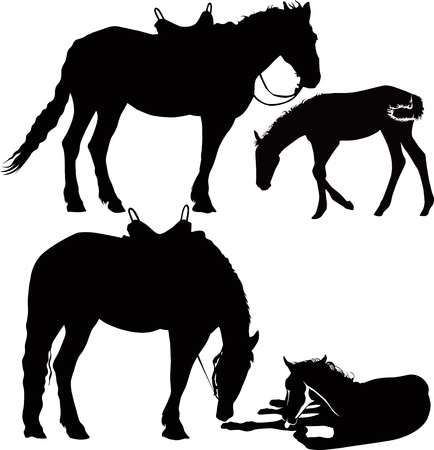 trotando: caballos de deporte ecuestre animales aislados sobre fondo blanco Vectores