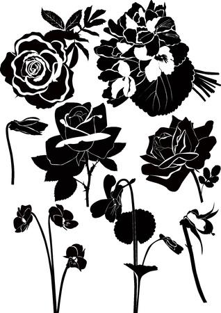 outline flower: Flowers Illustration