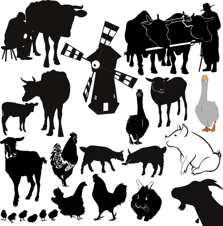 farm livestock farming Vector