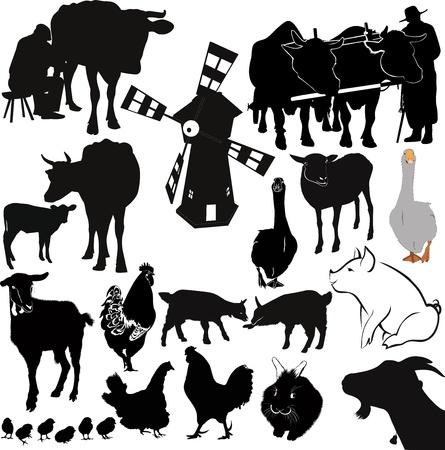 farm livestock farming Stock Vector - 17736690