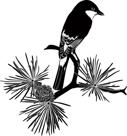 Small bird on a tree branch Stock Vector - 17848744
