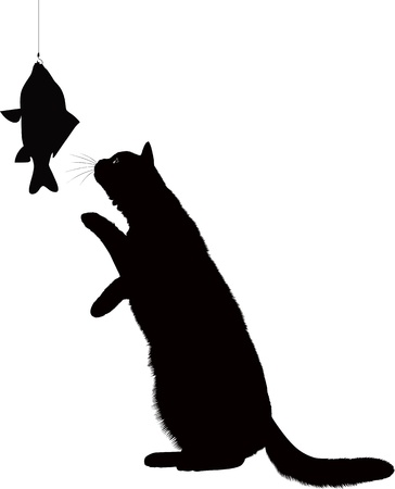 big: cat and fish isolated on white background Illustration