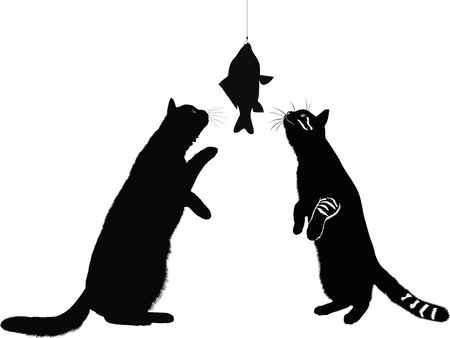 cats and fish animals isolated on a white background Vector
