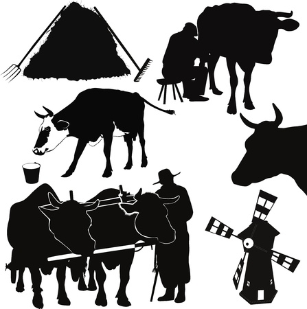 grazed: Cow a calf animals it is isolated Illustration