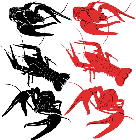 crayfish animals vector isolated on white background Stock Vector - 19825631