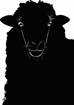 animal sheep lamb vector isolated on white background Vector
