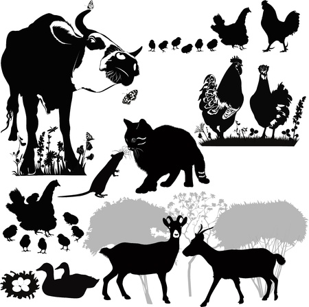 animals who live on the farm pets Vector