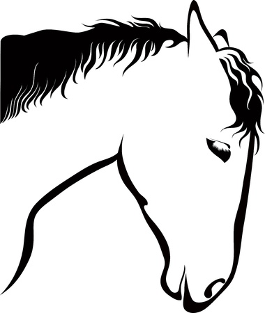 Horses of a horse animals it is isolated Vector