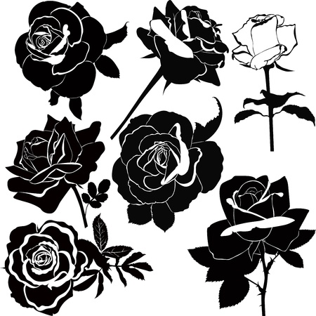 black: vector collection of rose flowers isolated Illustration