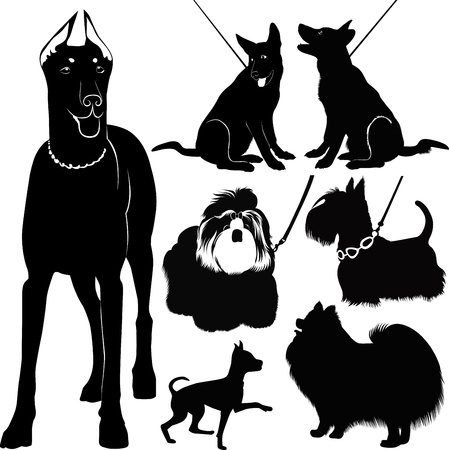 dog outline: dogs collection in the exhibition vector isolated Illustration