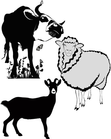 animals cow sheep goat Vector