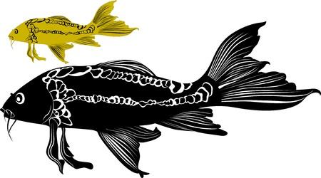 goldfish carp isolated on white background Stock Vector - 21987281