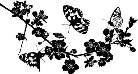 fleurs de cerisiers: rameau de fleurs et de papillons cerises
