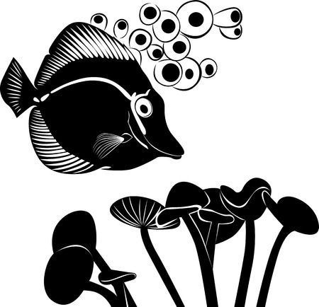 chelmon:   sea butterfly fish Illustration