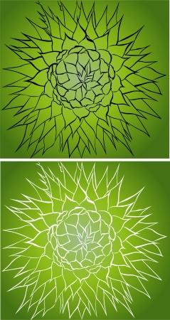 ostrożeń: Milk thistle thistle flowers  Ilustracja