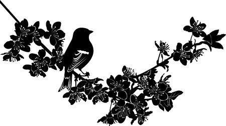 japonais: brindille cerisiers en fleurs oiseau