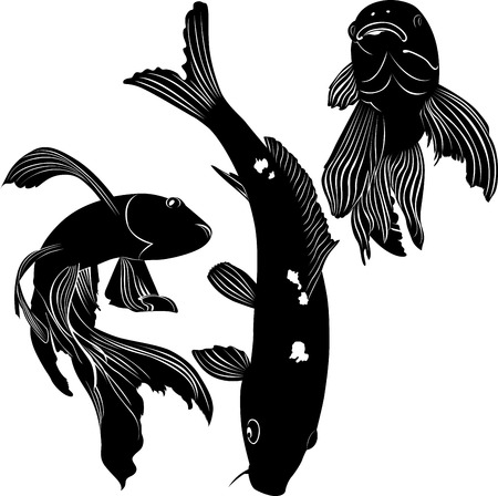 common carp: carp silhouette Illustration