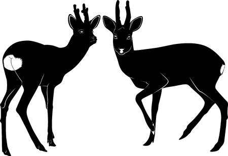 deer nature animal wildlife silhouette Vector
