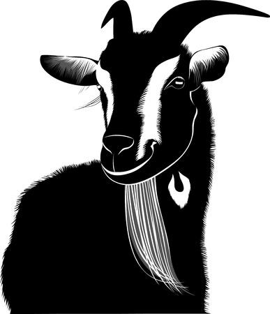 grazed: Goat agriculture  farm nature animal Illustration