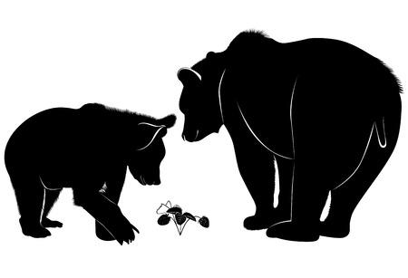 야생 곰 일러스트