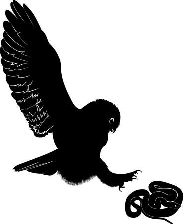 owl snake Vector