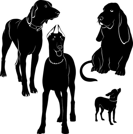 pure breed: dogs silhouette