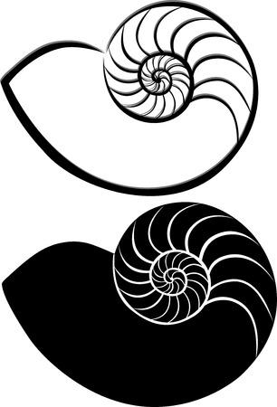 muszle powłoki Ilustracje wektorowe