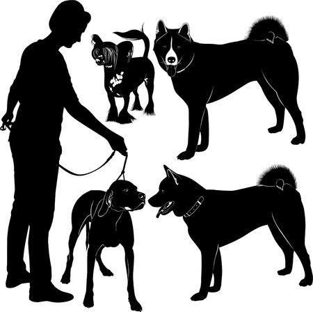 alaskabo: dog