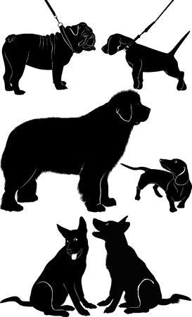 dog Shepherd Dog Dachshund bulldog Vector