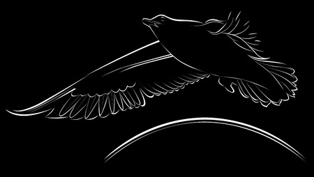 Logo seagulls Vector